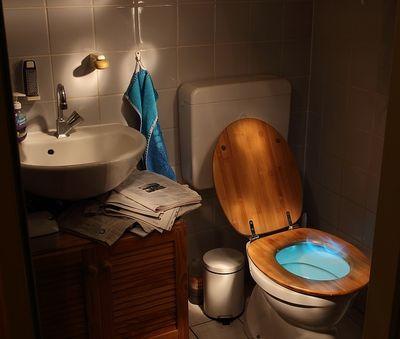 WC-Sitz mit Absenkautomatik kaufen